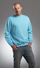 L&S Sweatshirt Business Class